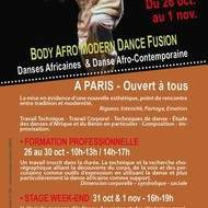 Formation & Stage Week-end BODY AFRO MODERN DANCE FUSION avec Vincent HARISDO
